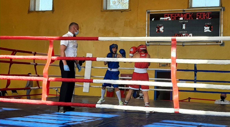 Результаты чемпионата Республики Беларусь по боксу  среди мужчин и женщин в г. Бобруйск
